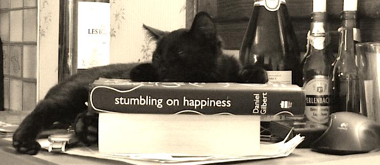 Maddie the kitten dozing on Stumbling on Happiness.